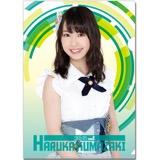 SKE48 2016年6月度個別グッズ「クリアファイル」 熊崎晴香