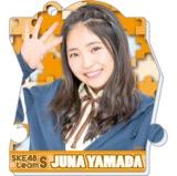SKE48 2016年2月度個別グッズ「パズルキーチェーン」 山田樹奈