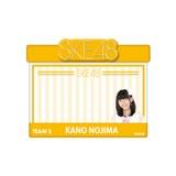 SKE48 2015年12月度個別グッズ「アピールネームバッジ」 野島樺乃