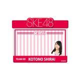 SKE48 2015年12月度個別グッズ「アピールネームバッジ」 白井琴望