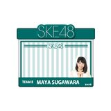 SKE48 2015年12月度個別グッズ「アピールネームバッジ」 菅原茉椰