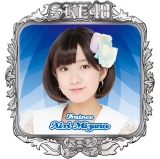 SKE48 2016年3月度個別グッズ「ピンバッジ」 水野愛理