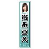 SKE48 2014年12月度個別グッズ「ネームステッカー」 岩永亞美