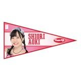 SKE48 2015年11月度個別グッズ「ペナント風ステッカー」 青木詩織