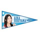 SKE48 2015年11月度個別グッズ「ペナント風ステッカー」 杉山愛佳