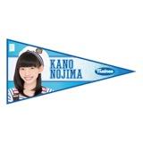 SKE48 2015年11月度個別グッズ「ペナント風ステッカー」 野島樺乃