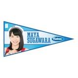 SKE48 2015年11月度個別グッズ「ペナント風ステッカー」 菅原茉椰