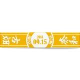 SKE48 2014年9月度 生誕記念マフラータオル 古畑奈和