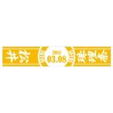 SKE48 2015年3月度 生誕記念マフラータオル 松井珠理奈