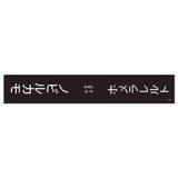 SKE48 生誕記念マフラータオル 2018年10月度 野々垣美希