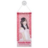 SKE48 2013年10月度個別グッズ 「SKE48 個別タペストリー」 加藤智子
