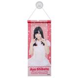 SKE48 2013年10月度個別グッズ 「SKE48 個別タペストリー」 柴田阿弥