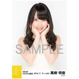 SKE48 2014年11月度net shop限定個別生写真5枚セット 高柳明音