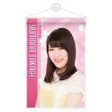 SKE48 2015年11月度個別グッズ「A4タペストリー」 高木由麻奈