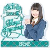 SKE48 2016年2月度個別グッズ「モバイルスタンド」 菅原茉椰