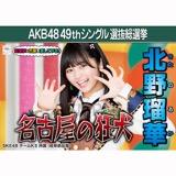 【6月中旬より順次配送】AKB48 49thシングル選抜総選挙 選挙ポスター 北野瑠華