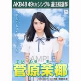 【6月中旬より順次配送】AKB48 49thシングル選抜総選挙 選挙ポスター 菅原茉椰