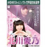 【6月下旬より順次配送】AKB48 53rdシングル 世界選抜総選挙 選挙ポスター 北川愛乃