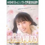 【6月下旬より順次配送】AKB48 53rdシングル 世界選抜総選挙 選挙ポスター 野島樺乃
