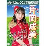 【6月下旬より順次配送】AKB48 53rdシングル 世界選抜総選挙 選挙ポスター 片岡成美