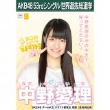 【6月下旬より順次配送】AKB48 53rdシングル 世界選抜総選挙 選挙ポスター 中野愛理