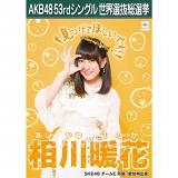 【6月下旬より順次配送】AKB48 53rdシングル 世界選抜総選挙 選挙ポスター 相川暖花