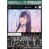 【6月下旬より順次配送】AKB48 53rdシングル 世界選抜総選挙 選挙ポスター 野々垣美希