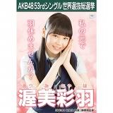 【6月下旬より順次配送】AKB48 53rdシングル 世界選抜総選挙 選挙ポスター 渥美彩羽