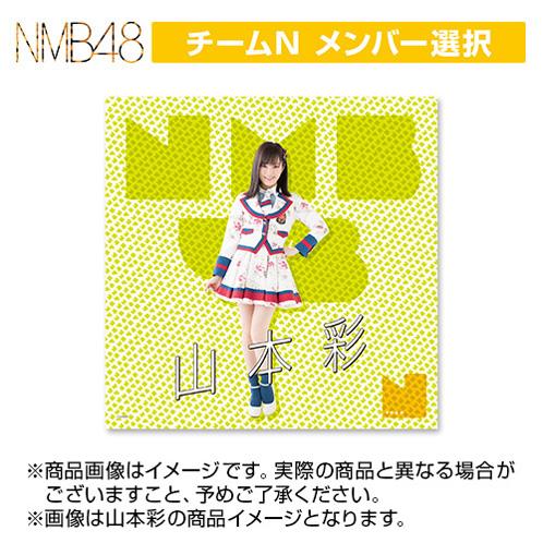 【3月下旬より順次配送】NMB48 推しマルチクロス TeamN